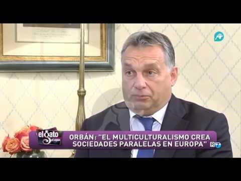 'El multiculturalismo crea sociedades paralelas en Europa'