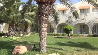 Djerba Magic Life Penelope beach 2016  часть 1.  пляж