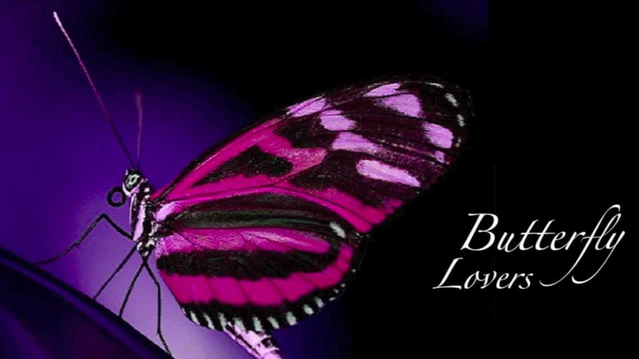 梁祝 The Butterfly Lovers Violin Concerto High Definition Audio
