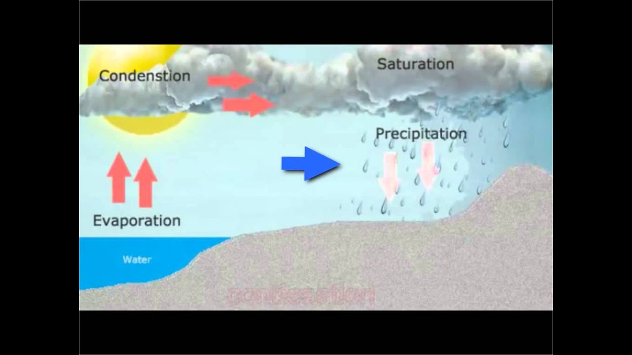 3 Types Of Rainfall Diagrams How To Make A Plot Diagram Convectional Rain Youtube