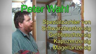 Besuch bei Zeisigzüchter Peter Wahl. Der mehrfache Weltmeister bei seinen Vögel.