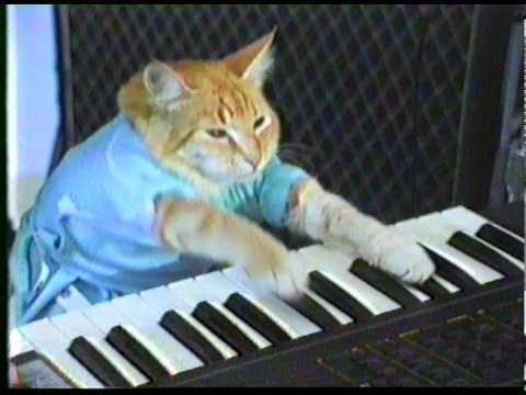 Quot Play Him Off Keyboard Cat Quot By Charlie Schmidt Youtube