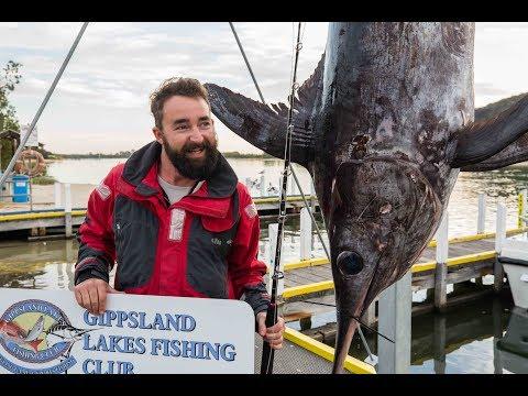 Epic Swordfish Battles In Bass Strait