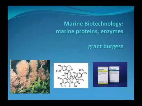 Professor J Grant Burgess, Newcastle University: Marine Enzymes Lecture 2015