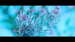플라워파워 (FLOWER POWER) 뮤직비디오 Teaser 1|KOLON SPORT #FLOWERPOWER2017