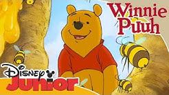 Kleine Abenteuer mit Winnie Puuh - Puuh und die Honigbienen | Disney Junior