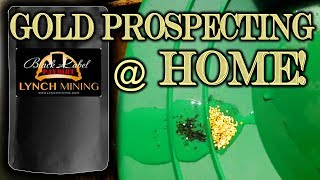 Gold Prospecting At Home #1 - Lynch Mining - Black Label Paydirt