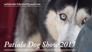 Patiala Dog Show 2017