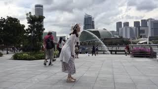 신혼여행, 싱가포르
