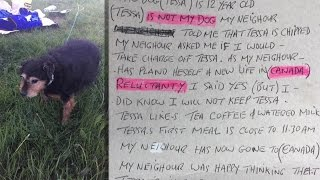 """Lonely 12-Year-Old Dog Found Abandoned in Field with Note: """"I Don"""