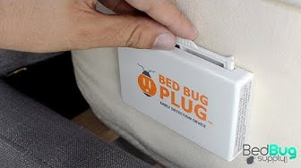 Bed Bug Plug Active Bed Bug Monitor Review