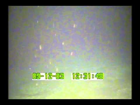 Alamagan Island | Cruise OES0307 | ALA03004