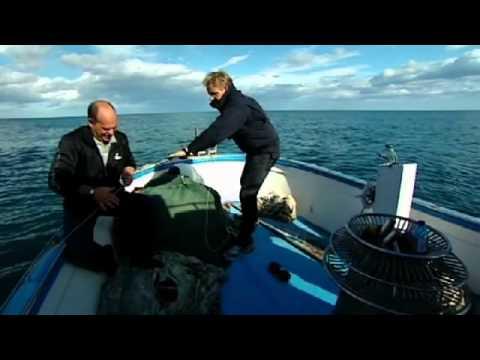 Octopus fishing in Sicily  - Gordon Ramsay
