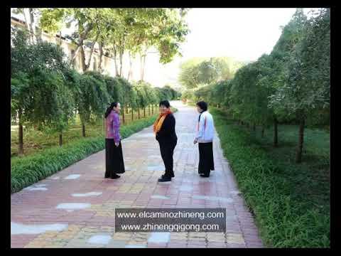 Visita a El Centro HuaXia ZhiNeng QiGong - Septiembre 2017