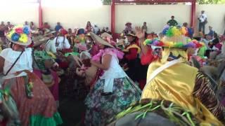 LAS BURRIQUITAS PREPARADAS PARA SALIR  - SAN PABLO-YARACUY - VENEZUELA
