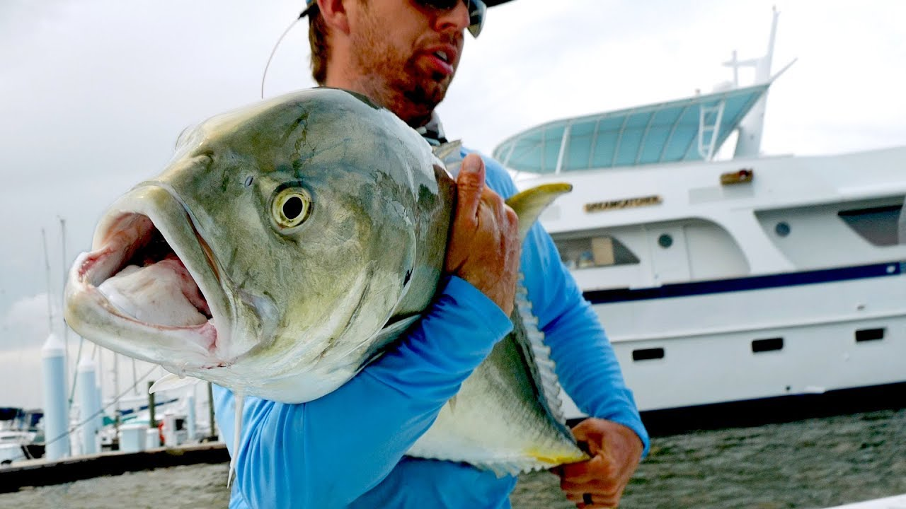 fishing-for-inshore-monsters-by-the-docks