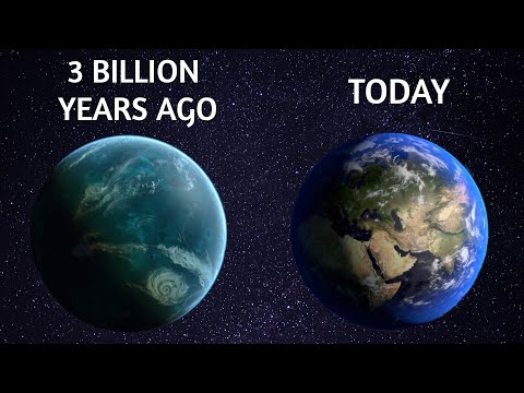 Could You Spend a Day on Earth 3 Billion Years Ago?
