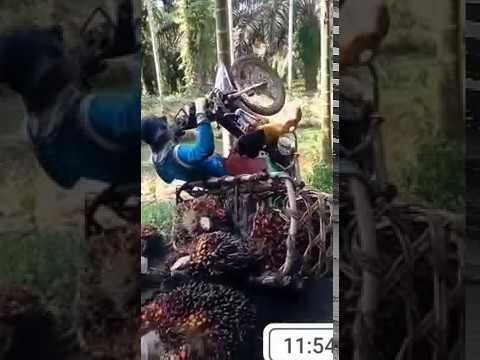 Kocak Parah, Video Lucu Indonesia Terbaru 2018