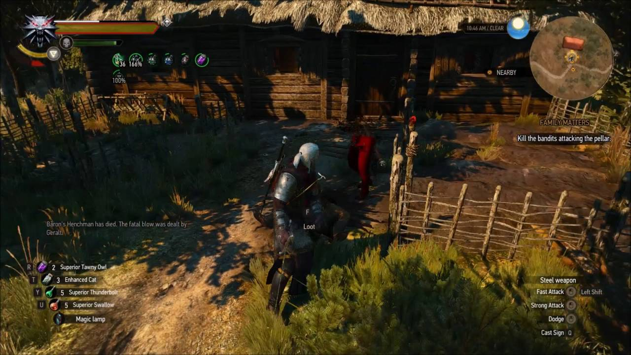 how to get euphoria witcher 3