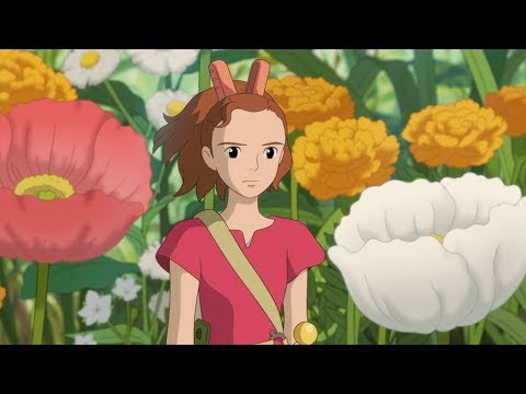 Hiromasa Yonebayashi - Characterising Surroundings