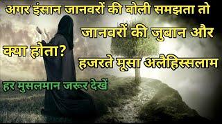 हजरते मूसा अलैहिस्सलाम और जानवरों के जुबान सिखने का जिद्द करने वाला इंसान? Jaanwaron ki zuban?