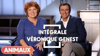 Véronique Genest dans Animaux Stars (intégrale) - Animaux