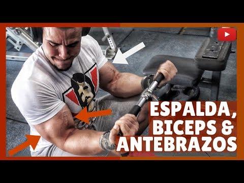 rutina-de-espalda,-bíceps-y-antebrazos-💪