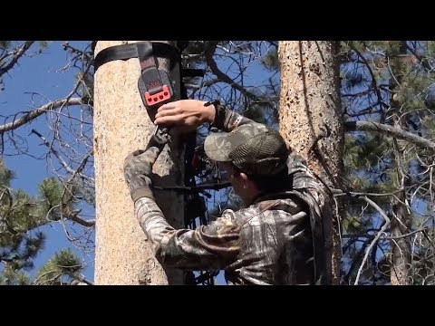 Survive Hunting Season With These Treestand Safety Tips