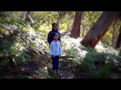 Travel around Sydney Australia best attractions & secrets: Royal National Park