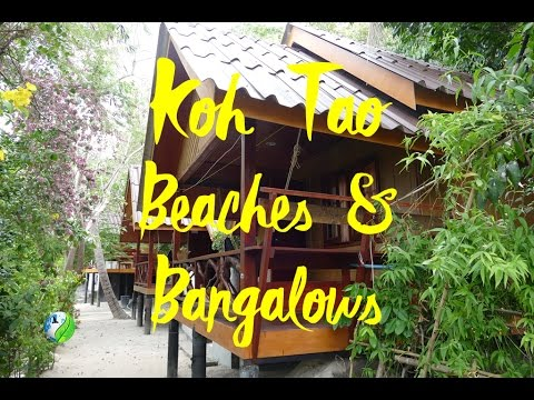 Discovering Beaches & Bungalows by Motorbike, Koh Tao Island Thailand