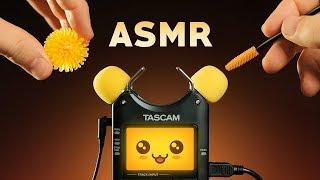 ASMR KAWAII TASCAM TINGLES | Mic Test Trigger Cuteness