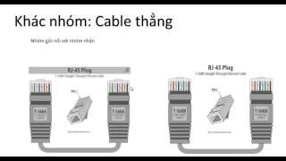 thiết bị mạng phần 2 cable mạng hub switch router