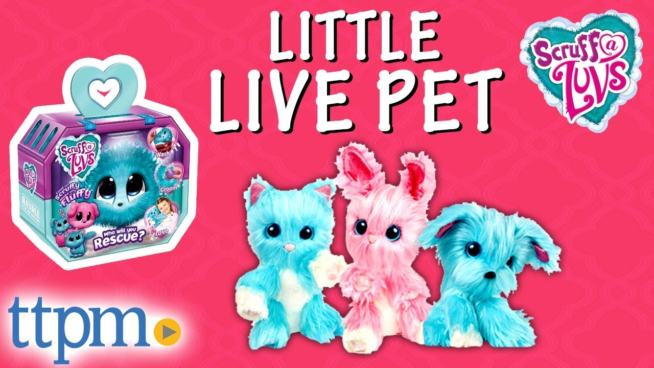 Scruff-a-Luvs Little Live Pet Toys - Unboxing and Review | Moose Toys