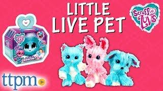 Шкірку-на-Лувс маленькі живі іграшки для тварин - Розпакування і огляд | Moose іграшки