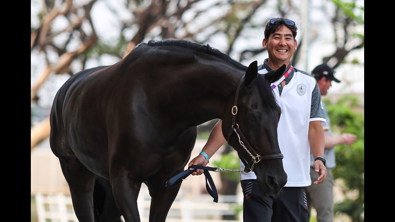 Recap of 2018 Season by Thai Dressage rider Tor Chalermcharn Yotviriyapanit