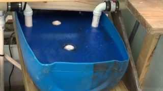 Aquaponics DIY swirl/bio-filter, system update