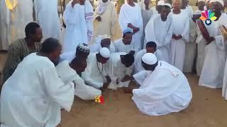 أولاد الشيخ البرعي ــ السوقهم ربح