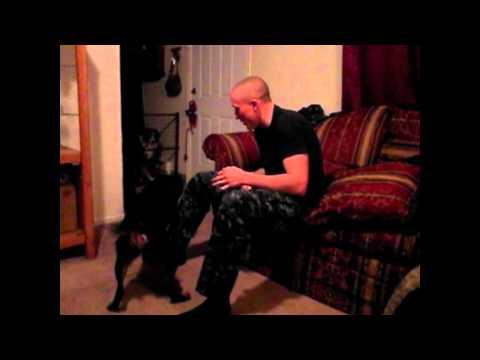 Peter vallandingham - Iris virus 1 yr. after deployment #1