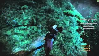 Wiedźmin: Dziki Han #8