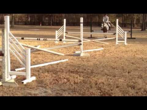 Sammy Jumping Jan 6 zoom format