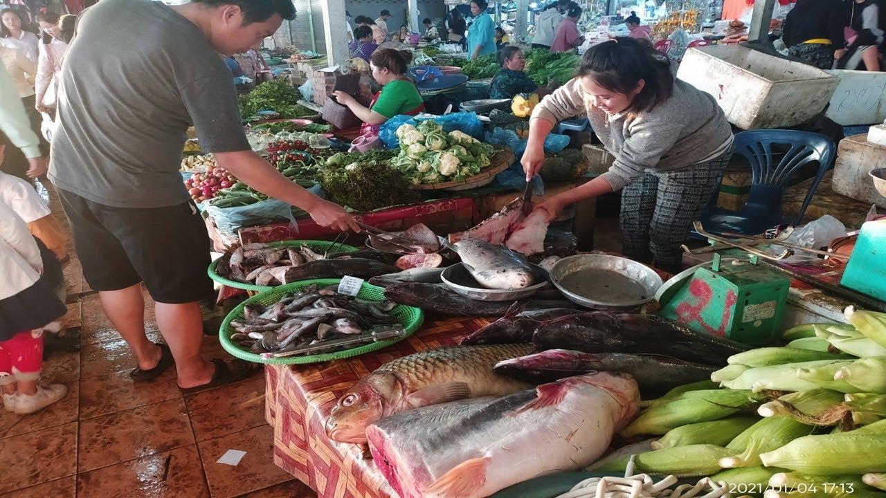 ตลาดหัวขัว นครหลวงเวียงจันทน์ หน่อขม หมากค้อ ปลาน้ำโขงมีแต่โตใหญ่ๆ