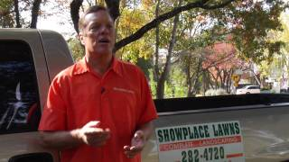 Lawn Care & Gardening Tips : How to Grow Grass in Texas
