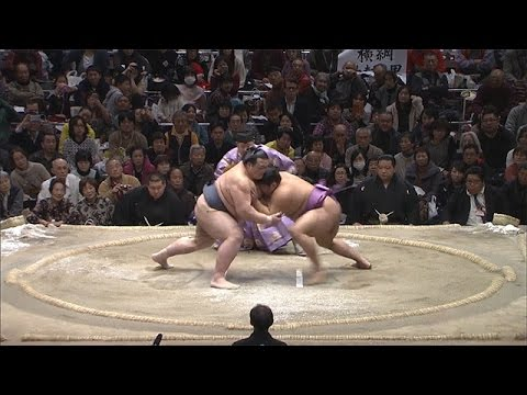 The Grand Sumo Tournament 【Fuji TV Official】