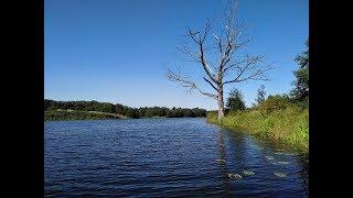 Нереальная красота. Рыбалка в Ярославской области. Река Нерль.