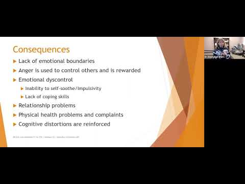 379  Addressing Symptoms in Addictions and Borderline Disorders Video