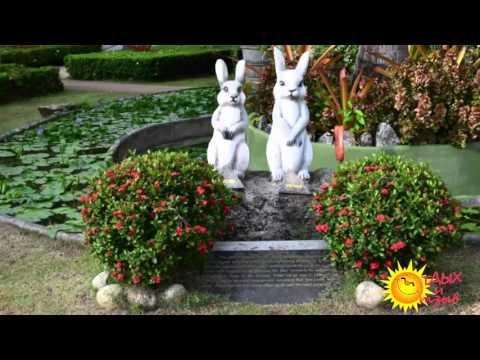 Отзывы отдыхающих об отеле Thavorn Palm Beach Resort 5*  Пхукет  (Тайланд) .Обзор отеля