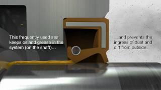 Shaft Seals - Trelleborg Sealing Solutions Mp3