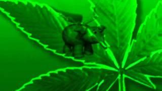 MADEVIL - Наркоман Павлик-Алоэ |MMV #21