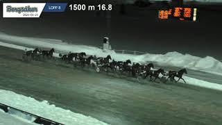 Vidéo de la course PMU LOPP 8