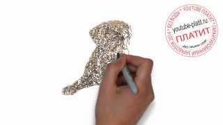 Нарисованные карандашом собаки  Как нарисовать карандашом собаку и кексик